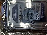 Western Digital Blue WD2500AAJB 250GB 7200 RPM 8MB Cache IDE Ultra ATA100 / ATA-6 3.5'' Internal Hard Drive Bare Drive for PC, Mac, CCTV, Tivo, DVR, NAS, RAID- 1 Year Warranty