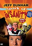 Spark Of Insanity (New Version)