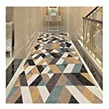 XDFERW Hallway Runner Carpet Rugs Door Mats Corridor Aisle Stair Carpet Dirt Stopper Anti-Slip Washable Hardwearing 3D Printing 6mm (Color : C, Size : 100x200cm)