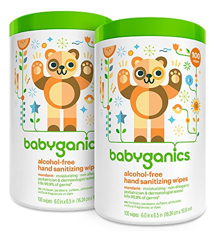 Babyganics Alcohol Free Hand Sanitizer Wipes, Mandarin, 100 Count Canister (Pack of 2) ()