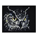DIY Diamond 5D Embroidery Paintings Rhinestone Pasted diy painting Cross Stitch,Full Drill Vintage Wall Sticker Home Decor , Owl