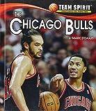 The Chicago Bulls, Mark Stewart, 1599536315