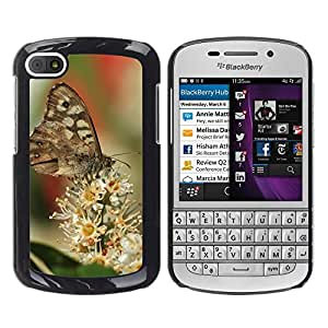Super Stella Slim PC Hard Case Cover Skin Armor Shell Protection // M00147429 Butterfly Butterflies Insect Animals // BlackBerry Q10