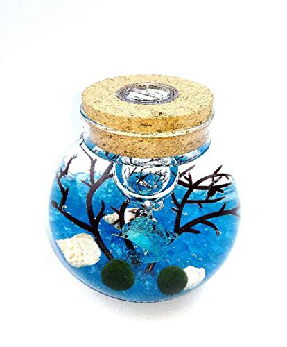 OMEM Aquarium Kits-Living Moss Ball,Valentine gift Sea Fan, Amazonite Gravel, Cone Seashell, Work Desk Decoration (Two years old, Blue)