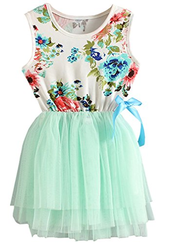 Niyage Little Girls Sleeveless Floral Princess Dress Tulle Tutu Sundress 5 Green