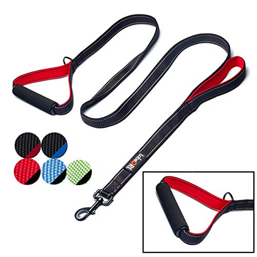 tobeDRI Heavy Duty Dog Leash - 2 Padded Handles, 6 feet Long - Dog Training Walking Leashes for Medium Large Dogs (Black) ()