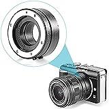 Neewer® Automatic Macro Extension Tube DG 10MM+16MM FT1 for Micro Four Thirds M4/3 Camera, fits Olympus PEN E-P1 P2 P3 P5 E-PL1 PL1s PL2 PL3 PL5 PL6 E-PM1 PM2 OM-D E-M5 E-M1 Panasonic Lumix DMC-GH1 GH2 GH3 GX7 G1 G2 G10 G3 G5 G6 GF1 GF2 GF3 GF5 GF6 GX1 GM