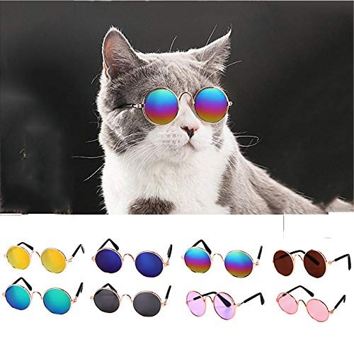 (TOLBEST Cat Glasses Cool Stylish and Funny Cute Pet Sunglasses Circular Metal Prince Sunglasses for Cat & Small Dogs)