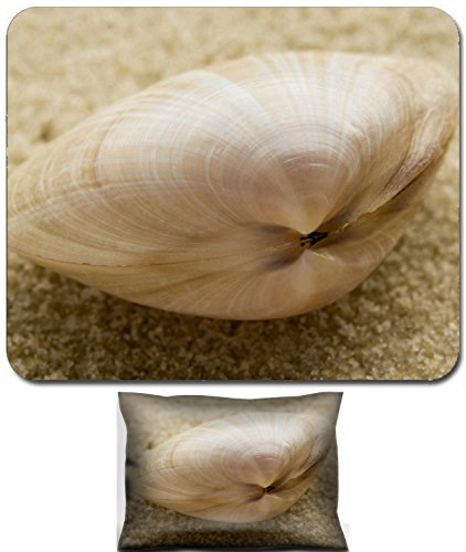 Liili Mouse Wrist Rest and Small Mousepad Set, 2pc Wrist Support IMAGE ID: 264836 Bivalve seashell on sand shallow depth of field