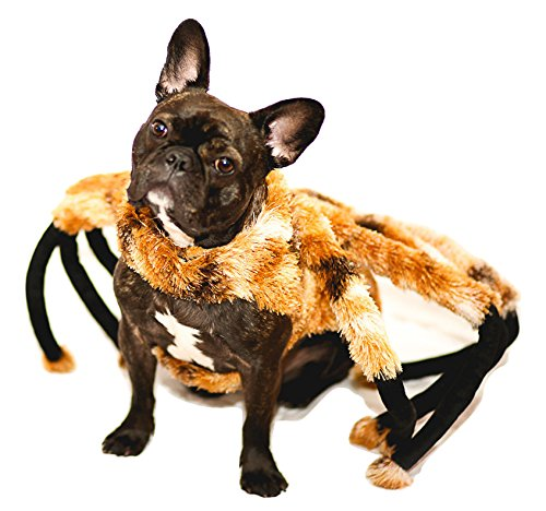 Tarantula Dog Halloween Costume (Nicky Bigs Novelties Spider Tarantula Dog Costume Mutant Halloween Pet Costume TarantuLucy Furry Legs)