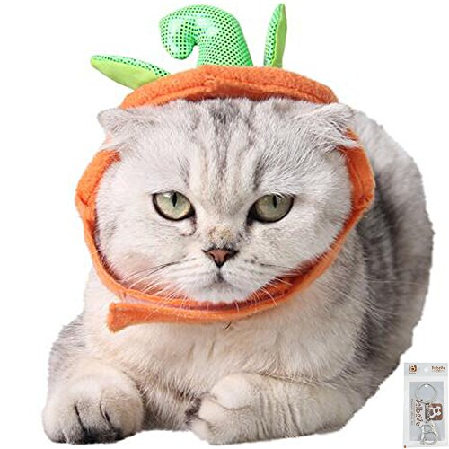 Bolbove Pet Pumpkin Costume for Cats & Small Dogs Party Halloween Cosplay Free Size Orange (Female Cat Halloween Costumes)