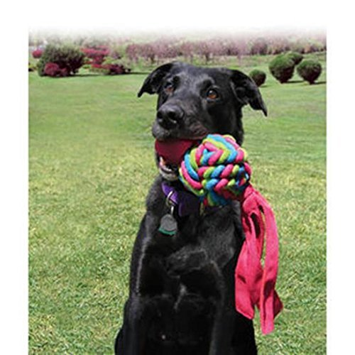 KONG Wubba Weave Dog Toy, Assorted (Large - 2 Pack) by KONG (Image #2)