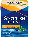 Scottish Blend Tea 80 Bags 3 Pack