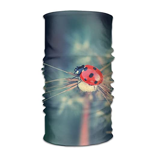 Headbands Ladybird Headwear Bandana Sweatband Gaiter Head Wrap Mask Neck Outdoor Scarf
