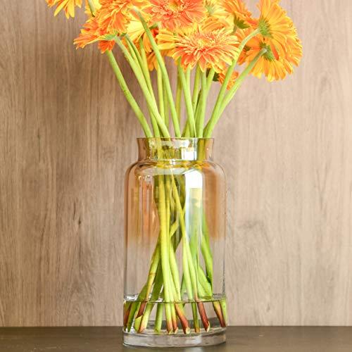 - Slegan Vintage Glass Vase 12 Inch Hand Blown Optic Amber Vase for Home Decor (Misty Amber)