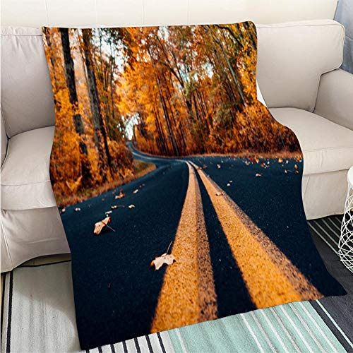 BEICICI Luxury Super Soft Blanket Autumnal Road in New Hampshire Sofa Bed or Bed 3D Printing Cool Quilt