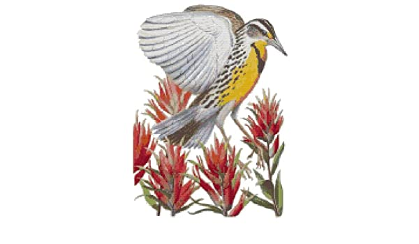 Wyoming State Bird and Flower Indian Paintbrush and Western Meadowlark Counted Cross Stitch Pattern