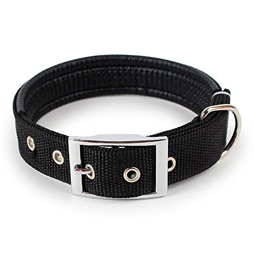 Basic Collar for Dog,Cat Adjustable Length Classic Regular Collar Pet Neck Strap (M, Black)
