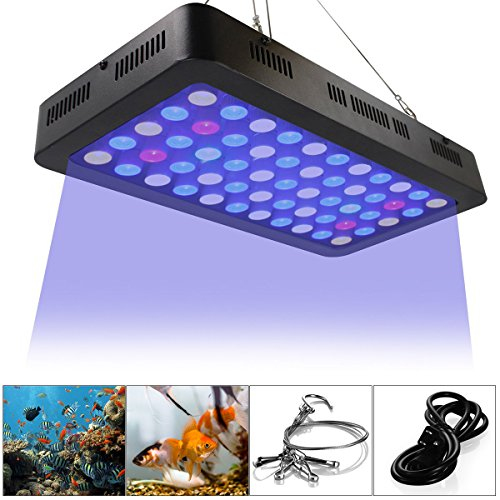 Led Coral Grow Lights in US - 7