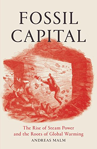 Fossil Capital: The Rise of Steam Power and the Roots of Global Warming (1 Capital Global)