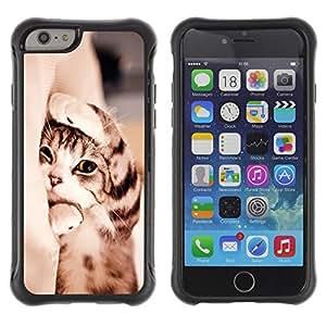 Suave TPU GEL Carcasa Funda Silicona Blando Estuche Caso de protección (para) Apple Iphone 6 / CECELL Phone case / / Kitten Shorthair Manx Sleepy Paw Cat /