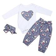 HESHENG 3pcs Newborn Kid Baby Girl Floral Clothes Jumpsuit Romper Bodysuit + Pants + Headband Outfits Set (70/0-6months, Purple)