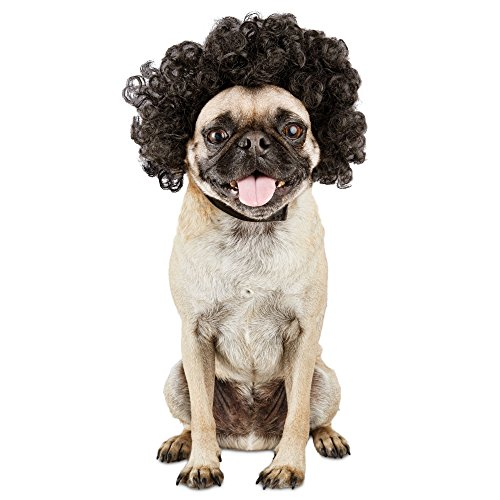 (Bootique Disco Wig Dog Costume,)