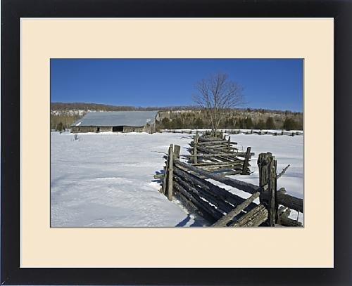 wooden split rail fence - 8