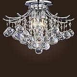 SwanHouse Crystal Chandelier Flush Mount Light Fixture Ceiling Lighting Modern Lamp 2 Lights CAD-MTTT/F-2L-W12 Silver