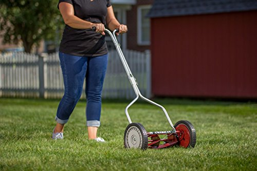 Buy what is the best electric lawn mower