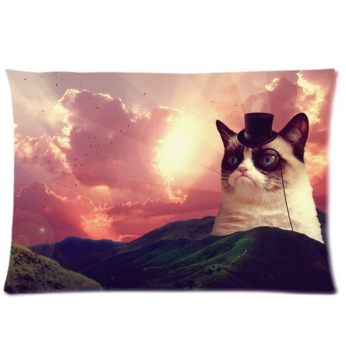 Beatriceyl Grumpy Cat (3) background Cushion Cover Pillowcase, 20x30inch 50% cotton 50% polyester material, two-sided printed Amoior
