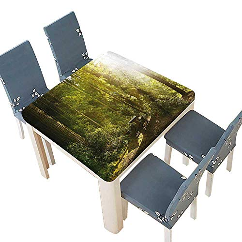 Washington Nationals Round Clock - PINAFORE Waterproof SpillProof Tablecloth Rainforest Wood Bench in Olympic National Park Washington USA Photo Green Yellow Picnic,Outdoor Indoor Party use 41 x 41 INCH (Elastic Edge)