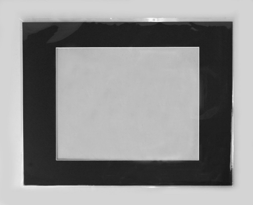 Backing Acid Free Golden State Art Pack of 10 11x14 Black Picture Mats Mattes with White Core Bevel Cut for 8x10 Photo Bags