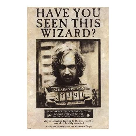 picture relating to Have You Seen This Wizard Printable known as Harry Potter Consist of Oneself Discovered This Wizard Sirius Black Wall Scroll 22\