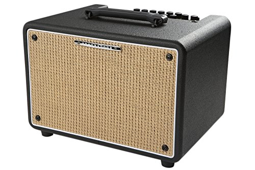 Ibanez Troubadour T150S 150W Stereo Acoustic Combo Amp Black by Ibanez
