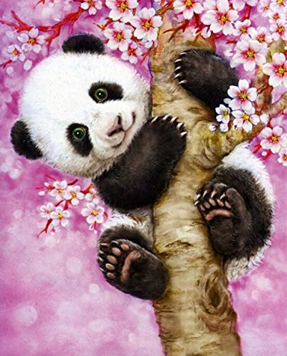 DIY 5D Diamond Painting by Number Kits, Crystal Rhinestone Embroidery Pictures Arts Craft for Home Wall Decor Gift (panda, 11.8 x 15.7inch)