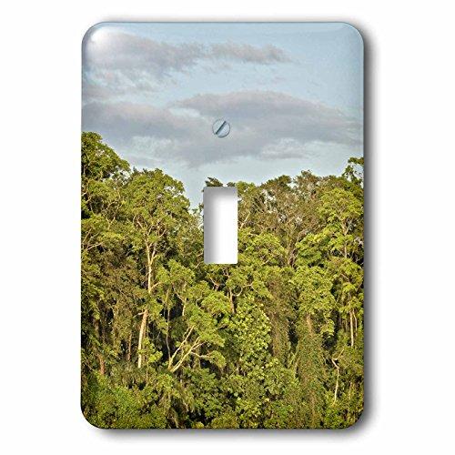 KIKE CALVO Rainforest Costa Rica Collection - Tortuguero National Park - Light Switch Covers - single toggle switch (lsp_234120_1) (National Tortuguero Park)