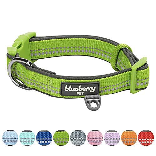 Blueberry Pet 9 Colors Soft & Safe 3M Reflective Neoprene Padded Adjustable Dog Collar - Baby Green Pastel Color, Large, Neck 18-26