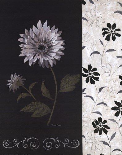 Nikki's Daisy by Vivian Flasch - 16x20 Inches - Art Print Poster