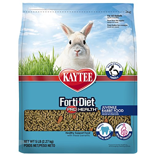 Kaytee forti Diet Pro Health Rabbit Food for Juvenile Rabbits, 5-Pound (Formula Kaytee)