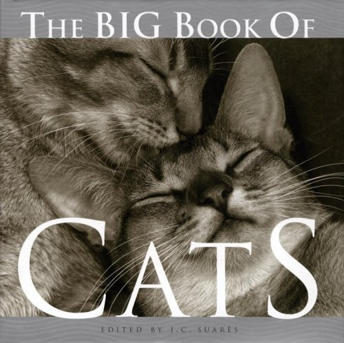The Big Book of Cats pdf epub