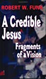 A Credible Jesus: Fragments of a Vision