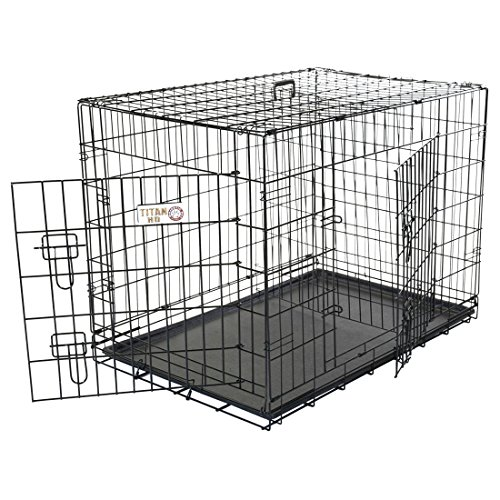36 inch Double Door Folding Dog Crate By Majestic Pet Products Medium Cocker Spaniel Dog Breed Kennel
