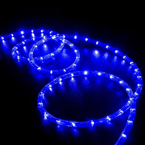 WYZworks 20' feet Blue LED Rope Lights - Flexible 2 Wire Accent Holiday Christmas Party Decoration Lighting | UL & CSA Certified