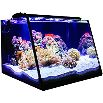 Lifegard Aquatics R800203 Full-View 7 Gallon Aquarium