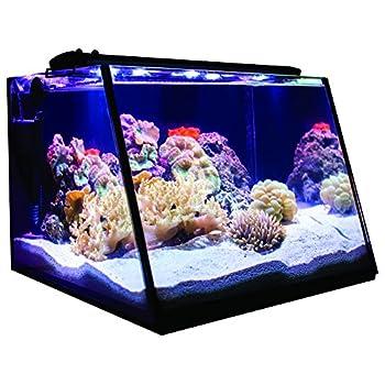Image of Home Improvements Lifegard Aquatics Full-View 7 Gallon Aquarium with LED Light, Heater, Net, Algae Magnet & Built-in Back Filter with Pump