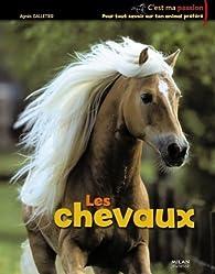 Les chevaux par Agnès Galletier