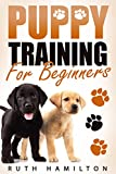 Puppy Training For Beginners