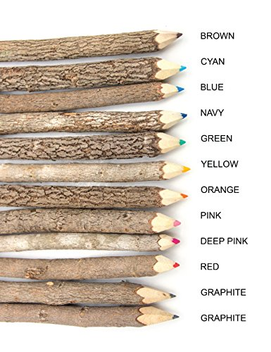 Assorted-Stick Twig Colored Outdoor Wooden Pencils Tree Child Camping Decorative Color by BSIRI (Image #2)