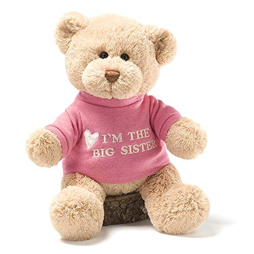 GUND I'm the Big Sister T-Shirt Teddy Bear Stuffed Animal Plush, Pink, 12